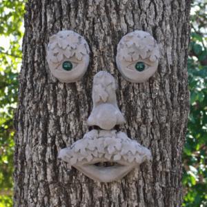 Mr MapleShade Tree Face